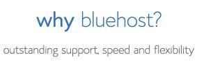 BlueHost Performance + Uptime Data